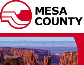 Mesa County IT Services