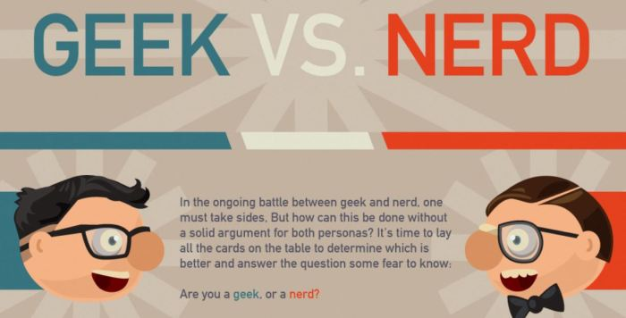 Time to decide: Do you fall into the geek camp or the nerd community?